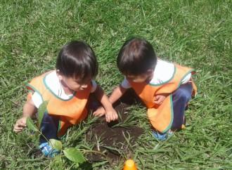 1200 árboles se sembraron en el Centro Educativo Pantaleon